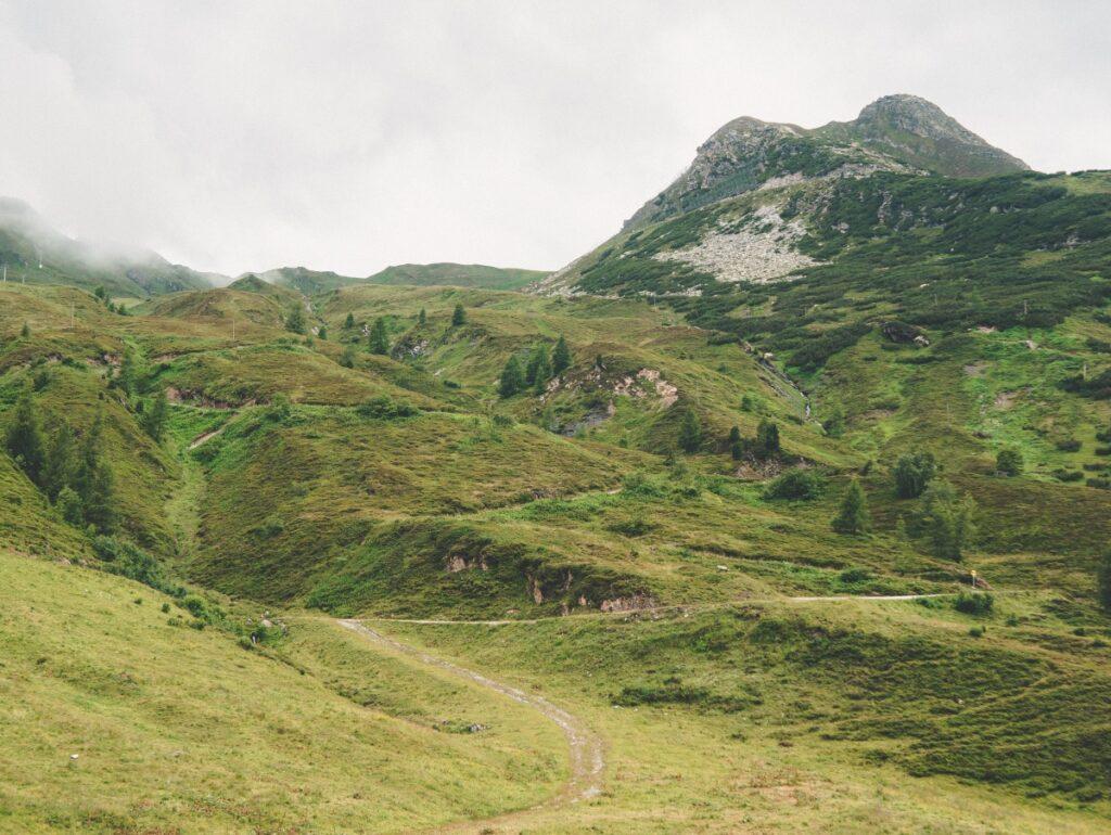 Zillertal Bergwelt mit Wiesen